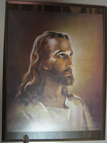 9 X 12 Walnut/Acrylic Head of Christ' (by Sallman) Wall Plaque