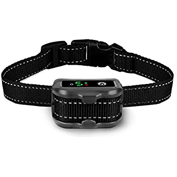 Upgraded Iegeek Rechargeable Dog Training Collar