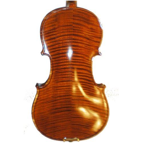 Molinari 406-4 4/4 Size Intermediate  Violin Outfit – Nitrocellulose Finish