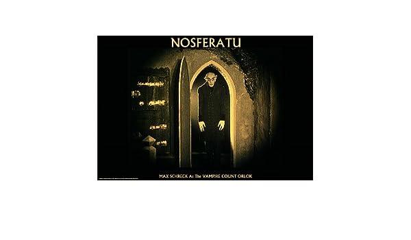 "Nosferatu movie poster 24 x 36/"" Max Shrek"
