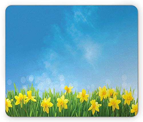 Daffodils Mouse Pad, Spring Seasonal Flowers in The Grass Field with Sunny Sky Floral Print, Standard Size Rectangle Non-Slip Rubber Mousepad, Yellow Green Blue