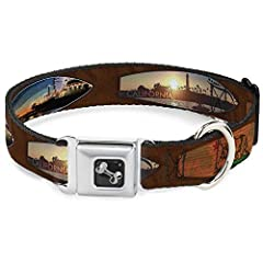 Your dog will be the talk of the town when people notice they're wearing this awesome SeatBelt Dog Collar! Made from high-density polyester and durable steel components, this collar is built to last. It features beautiful vibrant artwork. The...