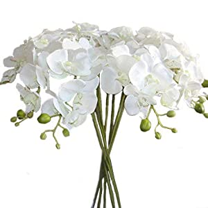 "Calcifer10pcs Artificial 31"" Silk Phalaenopsis Orchid Stem Bouquets Artificial Flowers for Wedding Party Home Garden Decor (White 1) 66"