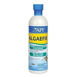 API ALGAEFIX Aquarium Algaecide 16-ounce
