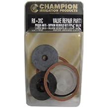 CHAMPION IRRIGATION PD RK-31-C Anti-Siphon Valve Kit, 1-Inch