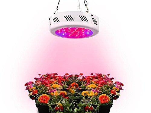 225 Watt Led Grow Light