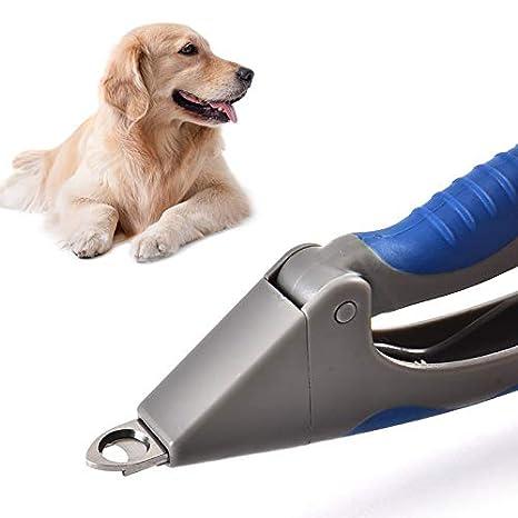 ZJQCWPENT Mascota Uña Tijera Perro Gato Belleza Limpia Tijera Uña Higiene Perro Gato: Amazon.es: Productos para mascotas