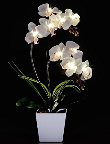 Potted Flower Centerpiece (FANStek 2AA LED Lighted Artificial Orchid Arrangement-Battery Operated Orchid Pot with 9 Lights (White))