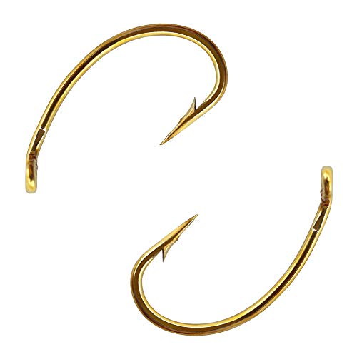 XFISHMAN Fly Hooks for Fly Tying Dry Wet Nymph Flies Curved Fishing Hooks Assortment Standard Wire Length Turned Down Eye (Pack of 100-240) (Curved Fly Hooks F2487(100pcs), 12#)