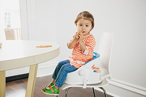 Prince Lionheart The Boost Plus Squish, Booster seat for Todder - Berry Blue by Prince Lionheart