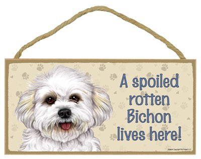 bichon-frise-puppy-cut-short-hair-cut-a-spoiled-your-favoriate-dog-breed-lives-here-door-sign-5-x-10