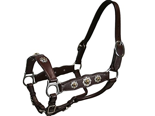 Tahoe Gold Cross Concho Yearling Show Halter