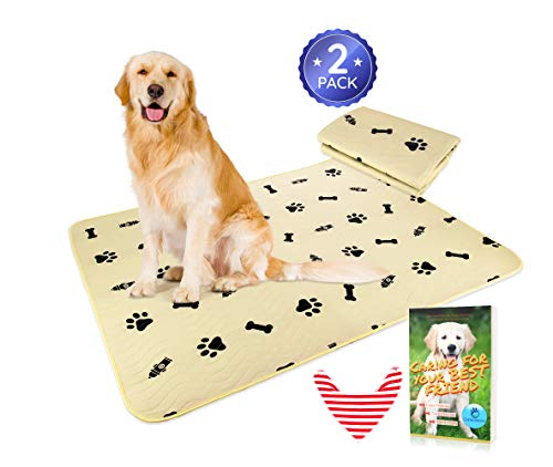Washable Pee Pads Dogs Incontinence