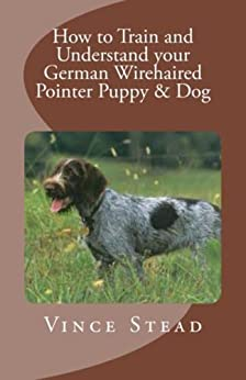 How to Train and Understand your German Wirehaired Pointer