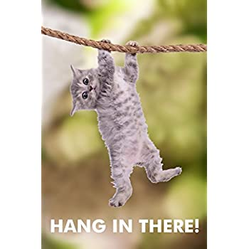 Amazoncom Hang In There Cat Poster Printed On Premium Cardstock