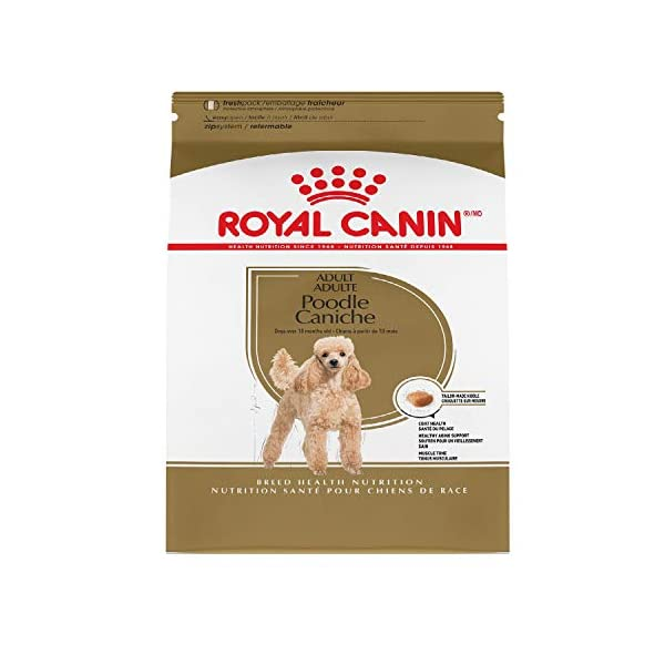Royal Canin Poodle Adult Breed Specific Dry Dog Food, 10 lb. bag