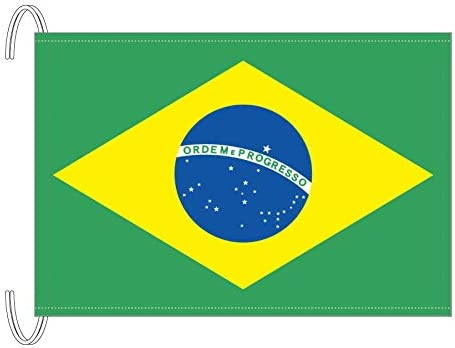 Amazon.co.jp: テトロン製 ブラジル国旗(M判・34×50cm): おもちゃ