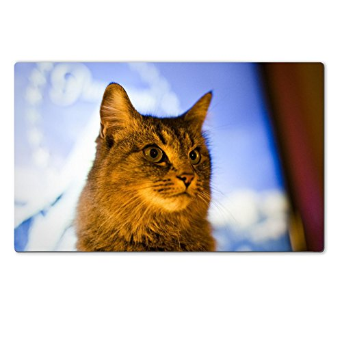 liili-large-table-mat-paramount-kitty-natural-rubber-material-image-16827661595