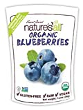 Nature's All, Organic Blueberries, Freeze-Dried, 1.2 oz (12 pack)