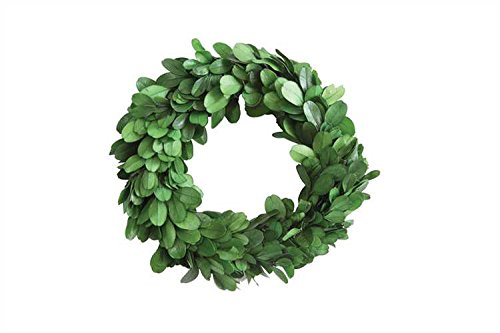 Small Preserved Boxwood Wreath - Set Of 6