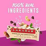 Larabar Gluten Free Bar, Chocolate Chip Cookie