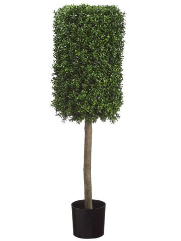50-Rectangular-Boxwood-Topiary-in-Plastic-Pot-Two-Tone-Green