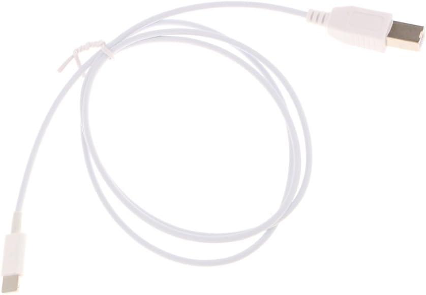 Gazechimp USB OTG Macho a Tipo B Cable Macho Conector Adaptador ...