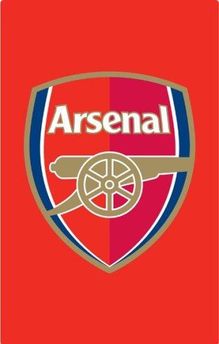 : Arsenal FC Color Crest Rug : Sports Fan Soccer