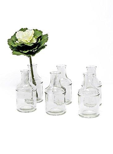 """Serene Spaces Living 6 Glass Bottle Bud Vases, Vintage Medicine Bottle Style - Elegant Vases, 5\"""" Tall by 2.5\"""" Diameter"""
