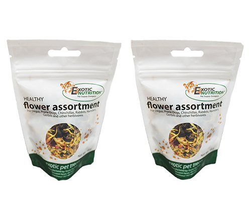 Exotic Nutrition Flower Assortment Treat .63 oz. (2 Pack) – Healthy Treat for Small Animals For Sale