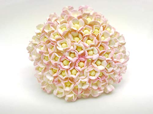 Tyga_Thai Brand 100 pcs. White Pink Color Double layers paper daisies mulberry paper flowers Craft Handmade 10 mm. Scrapbook for so many card & craft projects MRM1-2#519 (MULBERRY-PAPAER-DAISIES-10MM)