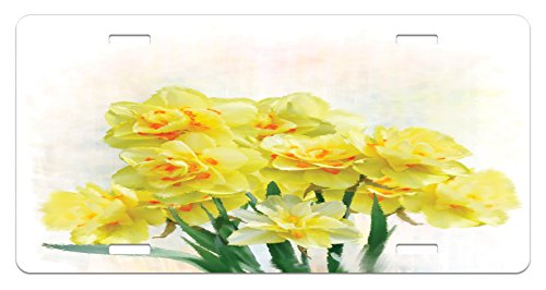 Daffodil License Plate by Ambesonne, Digital Watercolors Paint of Daffodils Bouquet Called Jonquils in England Lily, High Gloss Aluminum Novelty Plate, 5.88 L X 11.88 W Inches, Yellow (Watercolor Daffodil)