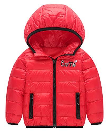 Toddler Winter Puffer Down Warm Coat Thicken Zipper Hoodie Outwear Lightweight Windproof Jacket 2-3T ()