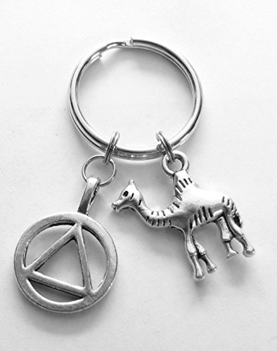 Heart Projects Alcoholics Anonymous AA Unity Symbol and Camel Charms 12 Step Anniversary Recovery Gift by Heart Projects (Image #1)