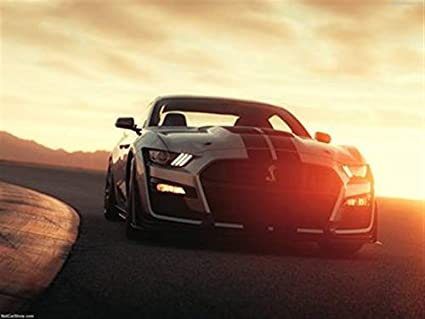 Amazon com: Ford Mustang Shelby GT500 2020 Poster 18