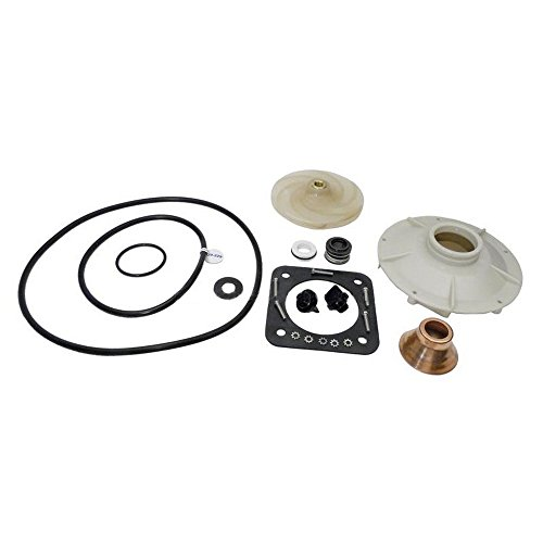 Pentair PP1016 Overhaul Replacement Kit Sta-Rite Pool and Spa Pump by Pentair