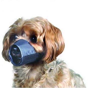 Petco Nylon and Mesh Dog Muzzle, Small, Color:Black, My Pet Supplies