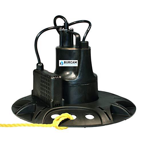 Most Popular Utility Pumps