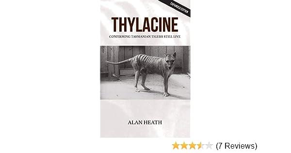 Thylacine Tasmanian Tiger Collecta Wildlife Model