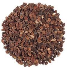 Premium Organic Buckwheat Seed 5lbs. By Old Cobblers Farm