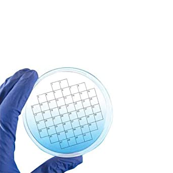 Diversified Biotech PetriStickers PSTK-1100 Square Grid Label for Petri Dish, 100 Square Grid (Pack of 36): Science Lab Petri Dishes: Amazon.com: Industrial ...
