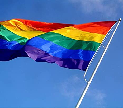 Gay Pride Flags VSVO LGBT Rainbow Flag 3x5 Foot with Sewn Stripes UV Protection Brass Grommets