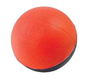 POOF 4 Inch Pro Mini Basketball Assortment, Colors may vary