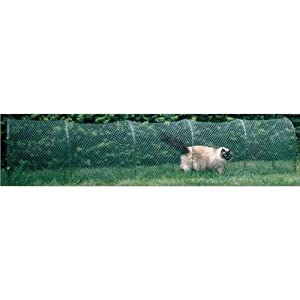 Kittywalk Outdoor Net Cat Enclosure for Lawns 9