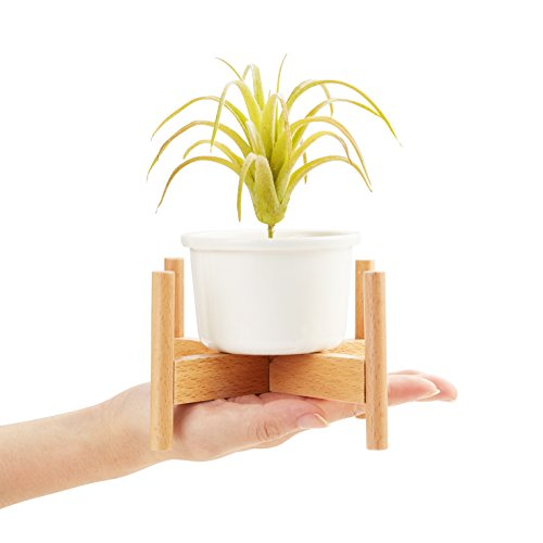 Feiren Outdoor Minimalist Mini Wood Modern Plant Stand/Planter/Ceramic Wood Modern Plant Stand
