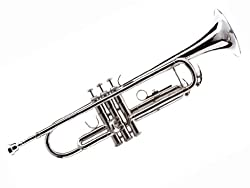 Hawk WD-T312 Bb Trumpet with Case and Mouthpiece, Nickel Plated