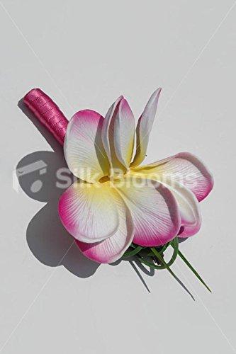 Pink-Tipped-White-Yellow-Frangipani-Plumeria-Buttonhole