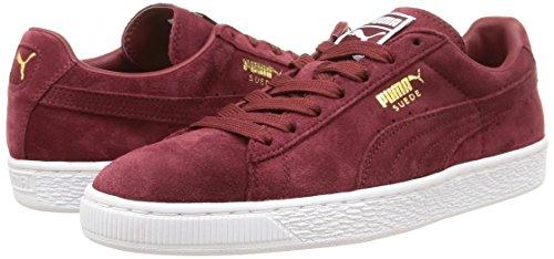 Unisex team cabernet – white Puma Suede Adulto Gold Sneaker Classic Rosso pzqz6Fxtw