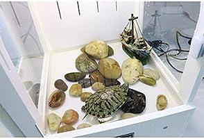 Jaulas Pet Life Box, Reloj Vivarium Alimentación Cisterna del ...