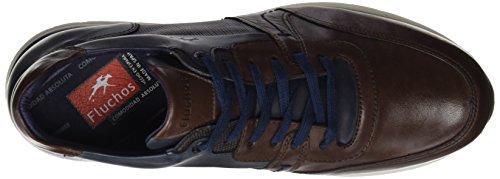Spain Hombre Oxford Cordones para de Erik Marrón Retail ES Zapatos Fluchos Castaño qpxnw0zE6Y